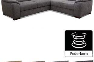 Cavadore Eck Sofa Moontegoo Wohnzimmer Couch mit Federkern 256 x 310x205 - Cavadore Eck-Sofa Moontegoo / Wohnzimmer-Couch mit Federkern / 256 x 88 x 227 cm (BxHxT) / Flachgewebe grau
